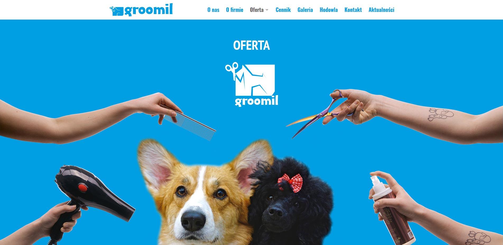 le-grafik-projekt-www-groomil-pl